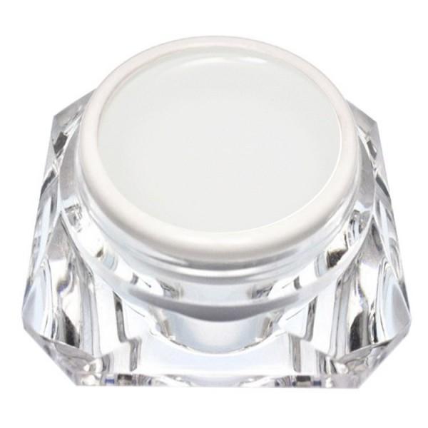 100ml Versiegelungsgel Glanzgel für LED und UV härtend